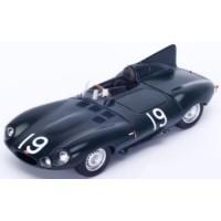 JAGUAR C 12h Sebring'55 #19, winner M.Hawthorn / P.Walters