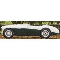 AUSTIN Healey 100S, 1955, green/white